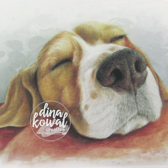 Notecards (set of 3) - Sleepy Beagle