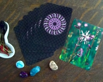 Weekly Tarot Reading Subscription with Spirit Within Tarot and Flower Spirit