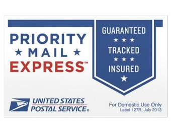 EXPRESS shipping and RUSH by Dec 25 processing