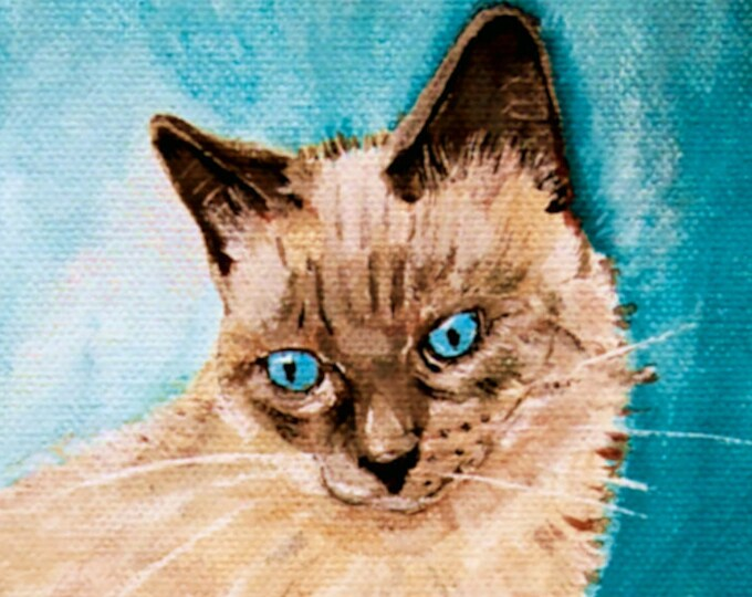 Custom Cat portraits from your photos