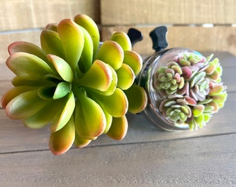 BeSpoke Bicycle Bell by Adore You Vintage Features Faux Succulents Unique Gift for Plant Lover Cycling Gift