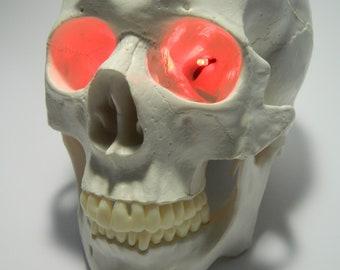 "Halloween Prop Costume Accessory 9 volt Battery Operated 24"" LED EYES for skulls, skeletons or masks. Choose Red, Green, Blue, White, Orange"