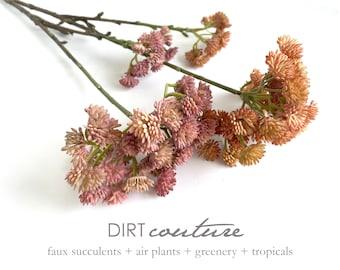 2 colors, Pink sedum, orange sedum, artificial succulent, stonecrop, sedum reflexum, sedum represtre, tetractinum