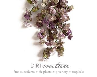 Succulent plant, purple, donkey tail, sedums, artificial succulents, hanging succulent