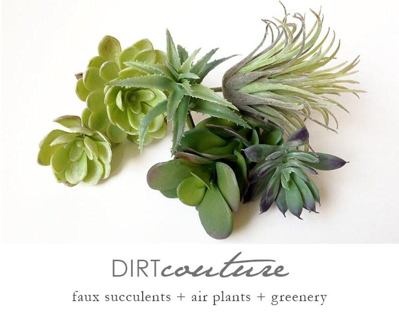Faux Succulents Collection Succulent Succulent Plants Etsy