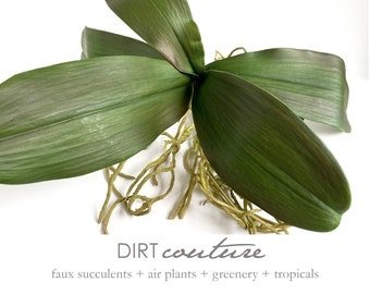 Lg. Faux orchid, orchid plant, phalaenopsis, orchid leaves, orchid roots, silk orchid, orchid plant