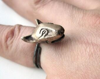 Dog bullterrier ring