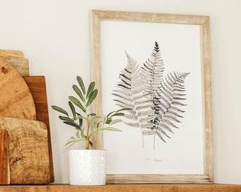 Botanical Ferns Framed Canvas Artwork - Farmhouse Decor - Black And White Wall Art
