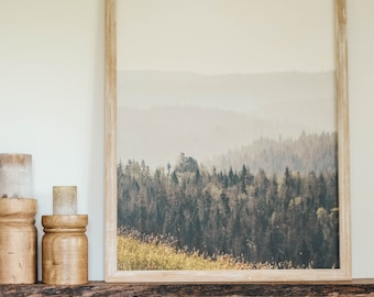 Oregon Forest Framed Canvas Artwork - Farmhouse Decor - Mountain Art - Cabin Wall Hanging - Photo With Trees