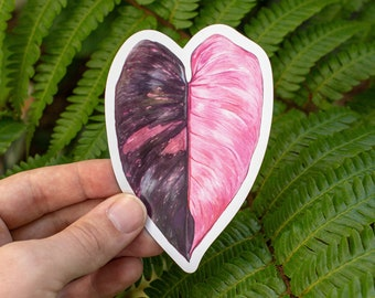 Philodendron 'Pink Princess' Vinyl Magnet