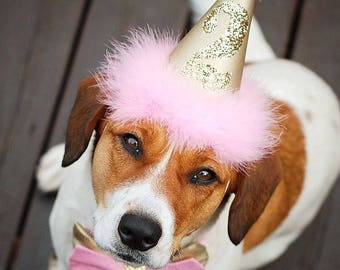 Pink And Gold Dog Birthday Hat Baby Princess
