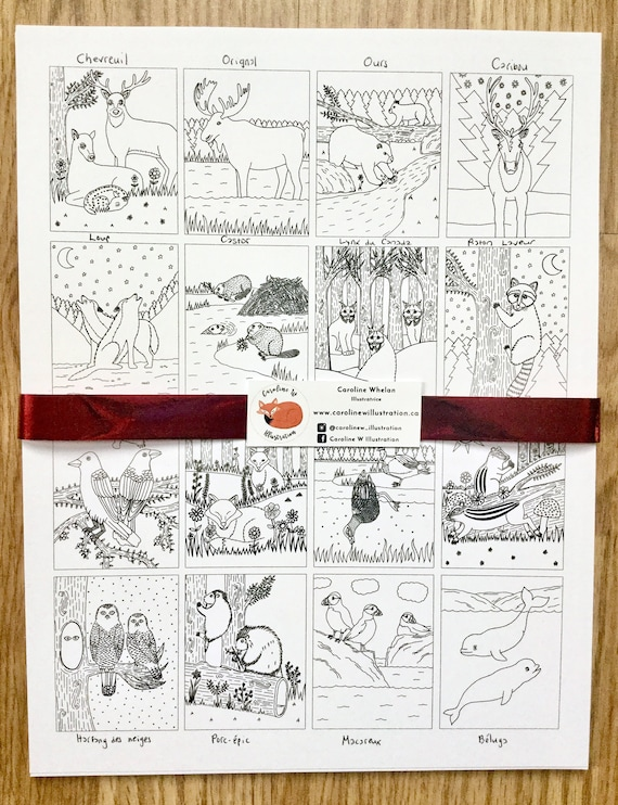 - Animal Colouring Pages Colouring Book Kids Kids Coloring Etsy