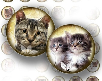 Cats and kittens 1 inch circles digital collage sheet bottle cap size for jewelry making paper supplies altered art download file (067) BUY 3 GET 1 FREE