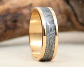 Gibeon Meteorite and Yellow Gold Ring