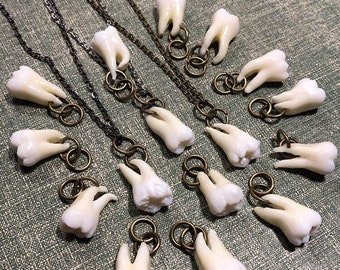 Tooth Fairy Series: ULTIMATES - One Real Human Tooth Pendant Necklace with 2 Defined Roots or JUST A TOOTH