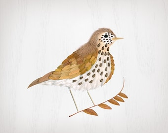 pressed leaf wood thrush print