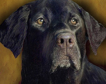 Custom Dog Portrait Black Lab 8 x 8 on canvas. Painted.Stretched Canvas.