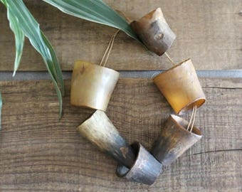 Vintage Natural Deer Horn Wall Decor