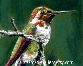 Hummingbird Print from Original Pastel Painting