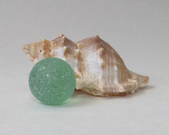 Genuine Large Clear Sea glass