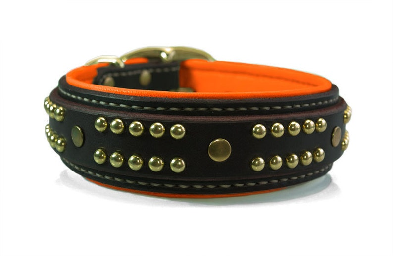 Custom Bully Dog Collars Pad Leather Dog Collar Orange Handstitched Dog Collar in Royal Blue Pit Bull Dog Collar for Large Dogs Green