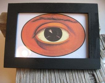 oculist eye print in wood frame