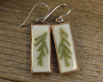 Juniper Evergreen Copper Earrings, Real Plant Jewelry, Nature Jewelry,