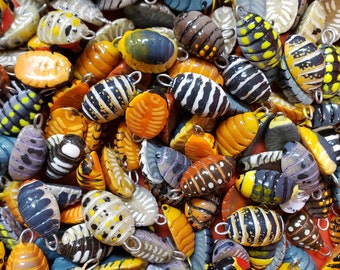Isopod charms 19 breeds to choose from
