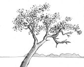 Lone Tree  - Namibia - 6 x 4  original ink paining