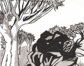 Quiver Tree & Rocks  - Namibia - 6 x 4  original ink paining