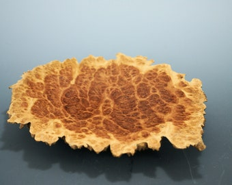 Ring Dish made from Red Mallee Burl from Australia, Display Piece for any Table, Shelf or Mantle, A3150
