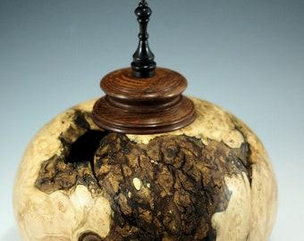 Maple Burl Lidded Vessel, Lacewood and African Blackwood Lid