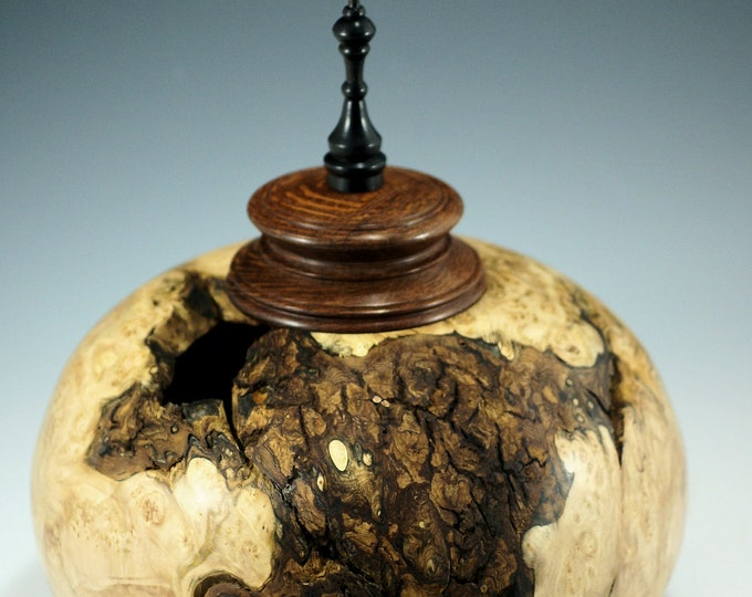 Featured listing image: Maple Burl Lidded Vessel, Lacewood and African Blackwood Lid