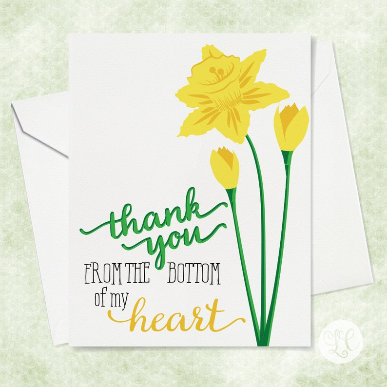 Daffodil Thank You Card  Thank You Card  Flower Thank You image 0