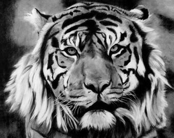 Vashti (Tiger). Original Drawing.