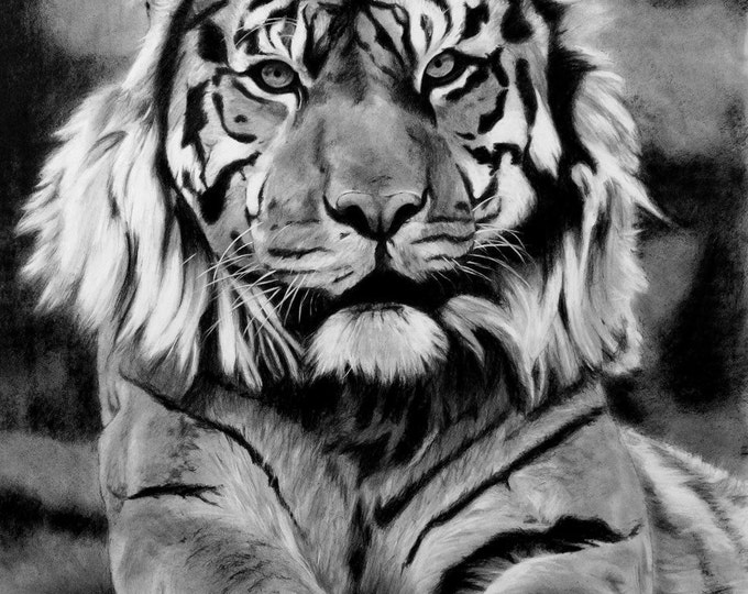 Vashti (Tiger). Original Drawing.