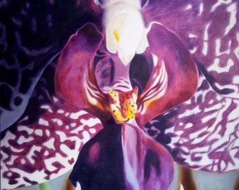 Phael. Original Oil Painting.