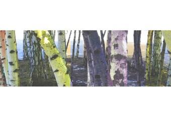 Wanderlust, Landscape Print, Woodland Art print, Birch Trees, Landscape Art