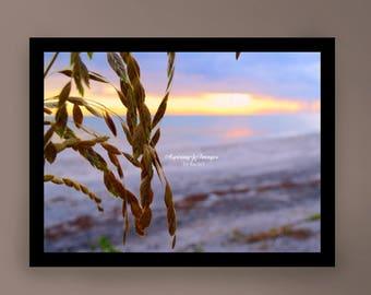 Beach Photography, Ocean Wall Art, Light Purple Water, Blue Soft Pink, Sand Beige, Seashore Photo, Sunset Home Decor, Beach Sea Oats