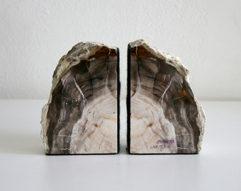 Petrified Cypress Bookends