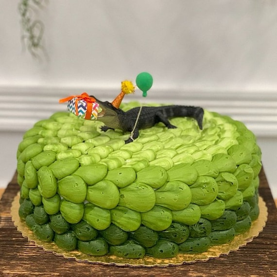 Miraculous Alligator Cake Topper Crocodile Cake Cake Topper Birthday Etsy Funny Birthday Cards Online Alyptdamsfinfo