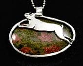 Hare, Rabbit, Nature, Jew...