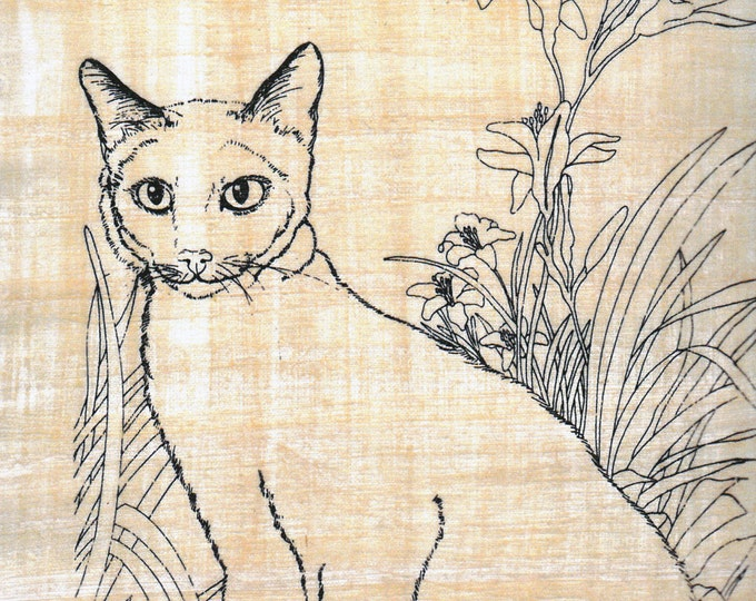 Cat! Color on Papyrus! Egyptian papyrus paper is fun to color on and makes a great art activity for kids!