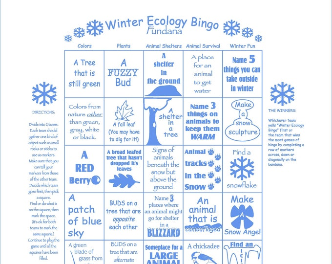 Winter Fun. Winter ecology bingo scavenger hunt game! Fun activity for winter! Keeps kids active and learning in the winter time!