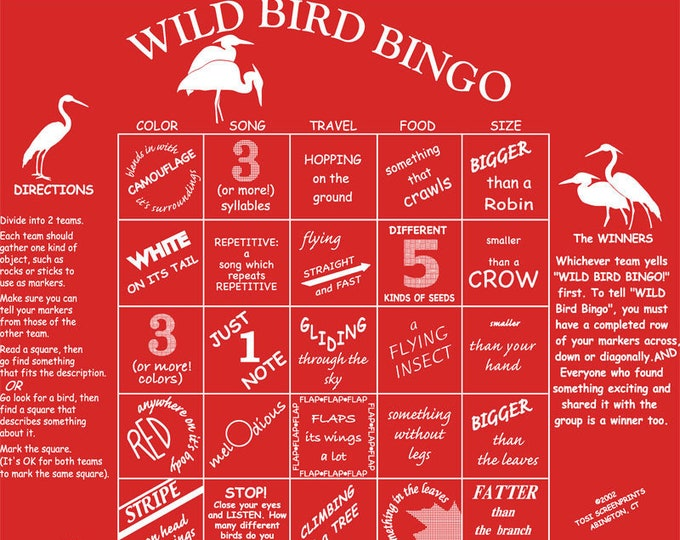 Wild Bird Bingo Game! A fun way to learn about the wonderful world of birds playing a bingo game-Wild Bird Bingo!