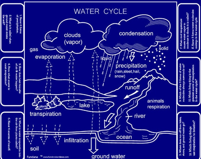 Wonderful Water! Play our Water Cycle Game and learn fun facts about water! Great for Kids, Scout Badges, Schools, Camps and More.