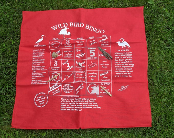 Wild Bird Bingo Game! A fun way to learn about the wonderful world of birds. Science enrichment activity for kids, families!