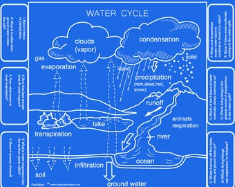 Water Cycle GAME! Wonder of Water is a fun way to learn about the water cycle. Great at home enrichment activity or for scout badges!