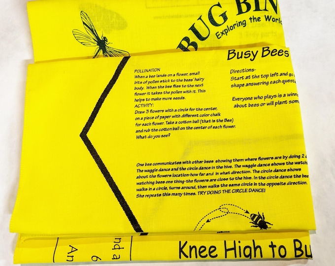 New! BUGS! Value Variety Packs 3 Fundanas! Bug Bingo, Busy Bees, Knee High to Bugs! Fun ways for kids ages 3-12 to learn about bugs!