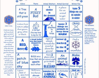 Winter Fun! Play our winter ecology bingo scavenger hunt game! Fun activity for vacation, no school snow days!